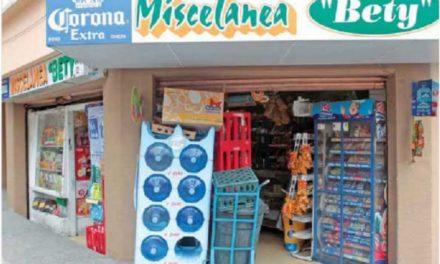 Los micronegocios y el desarrollo