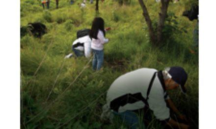 Creando conciencia ambiental