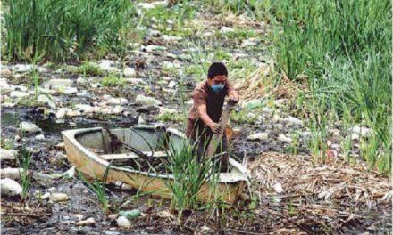 El deterioro ambiental