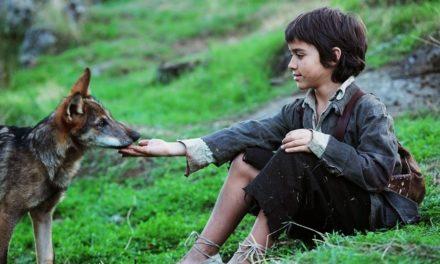 Los animales, portadores de derechos