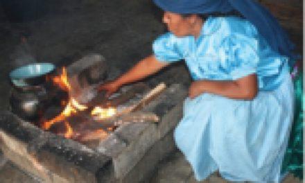 Uso de leña en comunidades rurales