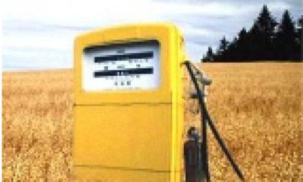 Biocombustibles, los retos