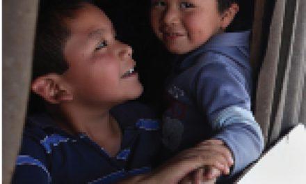 Pobreza y derechos sociales de niñas, niños y adolescentes (I)
