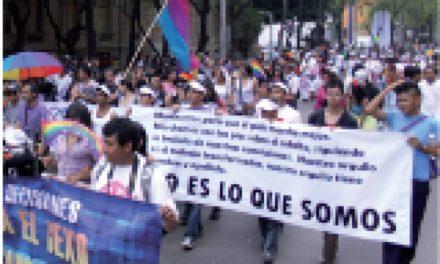 Reconocimiento de la diversidad sexual, indispensable para la democracia