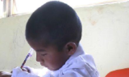 Índice de los derechos de la niñez mexicana, 2012