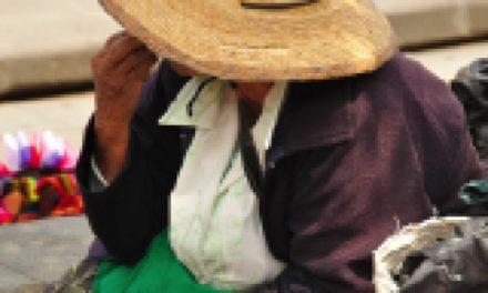 Una nueva mirada a la pobreza latinoamericana