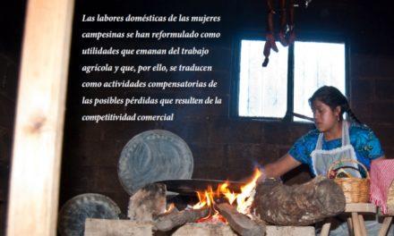 ¿Por qué no se legislan las labores domésticas?