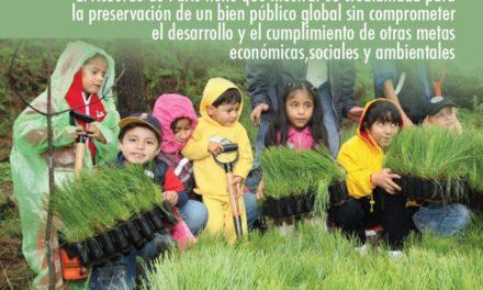 Cambio climático, estilo de desarrollo y bienes públicos: la ecuación fundamental