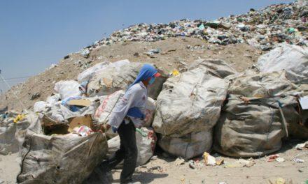 Medio ambiente: la otra gran crisis