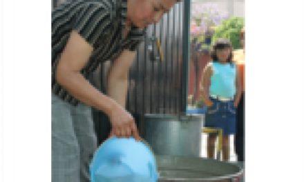 Trabajo doméstico: alarmantes magnitudes