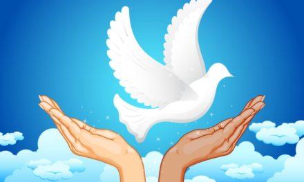 Cooperación Sur-Sur para la paz y la prevención de conflictos