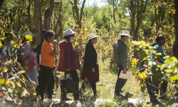 Territorios y Bienestar: Seminario presentará relación de vínculos rural-urbano con crecimiento inclusivo en Chile, Colombia y México
