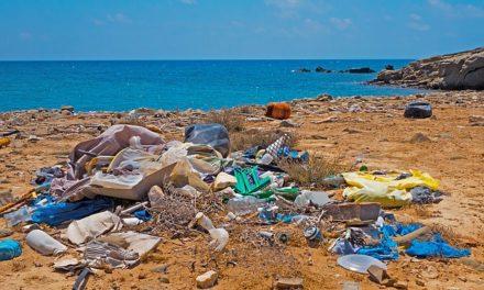 Cada año 13 millones de toneladas de plástico terminan en el mar