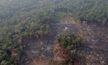 Durante millones de años el Amazonas desembocó en el Pacífico