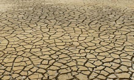 Cambio climático amenaza distribución de agua y alimentos: los pobres son los más vulnerables