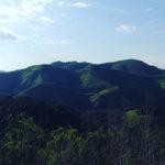 Ciudadanía y florestanía: la Amazonia, titular de derechos