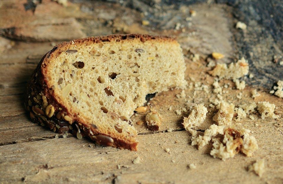 Desnutrición y obesidad: las dos caras de la malnutrición