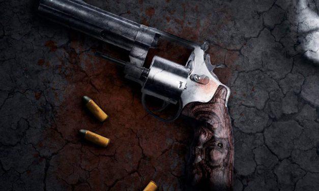 Los estados más violentos en el año más violento