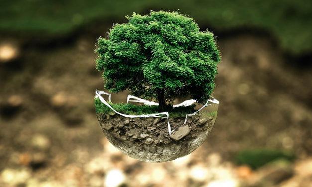 El ecoceno como alternativa al antropoceno