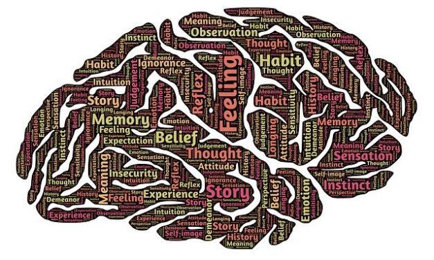 Mi cerebro y mi aprendizaje… Una historia por contar