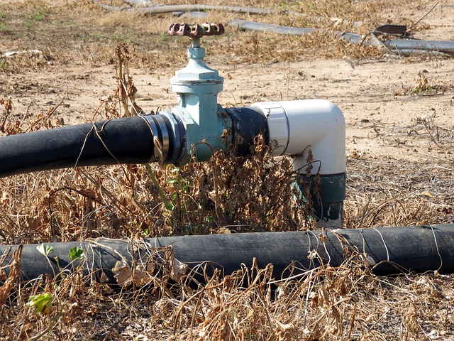 COVID19 y la crisis del agua